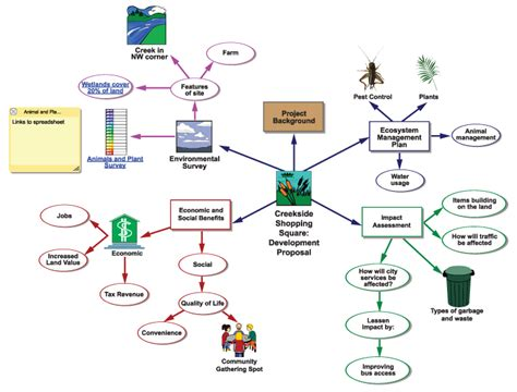 science graphic organizer  outline examples