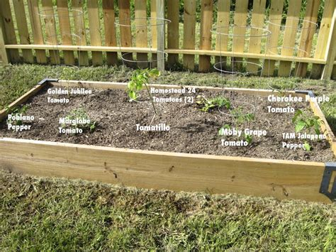 4x8 Raised Bed Vegetable Garden Layout 4x8 vegetable garden layout 4x8 raised bed square foot