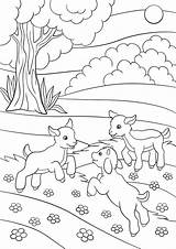 Goat Coloring Pages Farm Printable Getcolorings Getdrawings sketch template