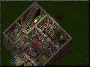 Ultima Online and the Player Housing Debate Runeforge Gossip
