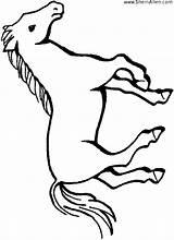 Coloring Horse Miniature Template sketch template