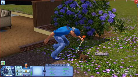 The Sims 2 Pets Cheats Pc The Sims 2 Pets Cheats And