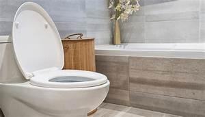 Toilette Verstopft Tipps : urinstein entfernen tipps f r eine saubere toilette roombeez ~ Markanthonyermac.com Haus und Dekorationen