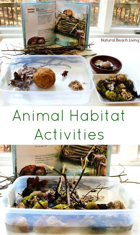 animal habitat activities for preschool living 310   animal habitat activities pin
