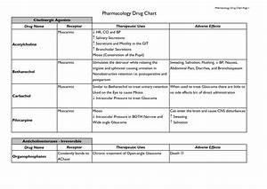 Kreditzinsen Berechnen Excel : ausgezeichnet beispiel bsa medical formular fotos bilder f r das lebenslauf arbeitsblatt ~ Themetempest.com Abrechnung