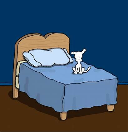 Bed Night Giphy Dog Chippy Sweet Dreams