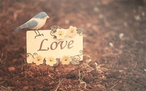 love  beautiful picture hd wallpapers rocks