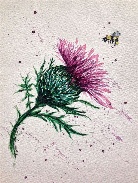 watercolour   scottish thistle  bee