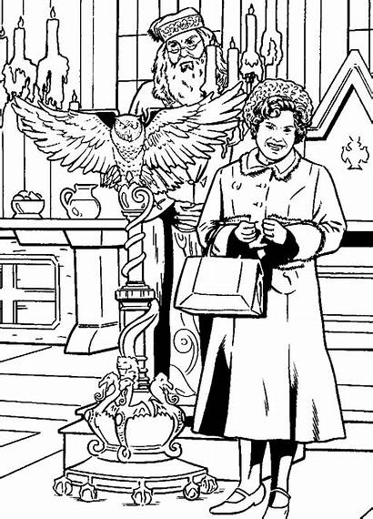 Potter Harry Coloring Phoenix Order Pages Fun