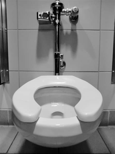 the flushing toilet automatic flushing toilets are the root of all evil
