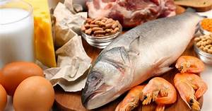 What Is Protein And Which Are The Best Food Sources