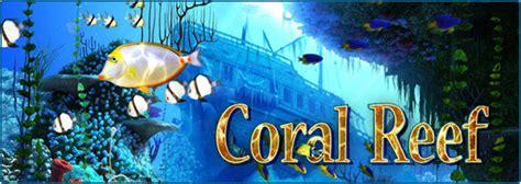 fish  screensavers coral reef underwater world