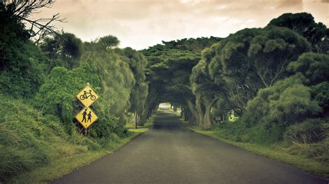 road backgrounds  psd ai