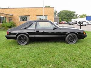 1979 Ford Mustang for Sale | ClassicCars.com | CC-1216331