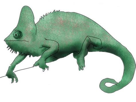 chameleon engineering drawing drawings pictures