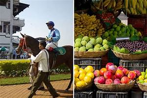Farmers' Market At Mahalaxmi Race Course, Little Black ...