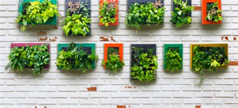 How To Do A Vertical Garden by Vertical Gardening 101 Doityourself