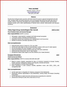 Lovely excellent resume resume pdf for Excellent resume example