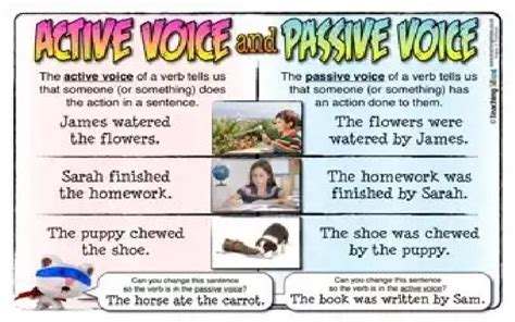 Active Versus Passive Voice Sentences In Business English Communication  Businessandfinance Blog