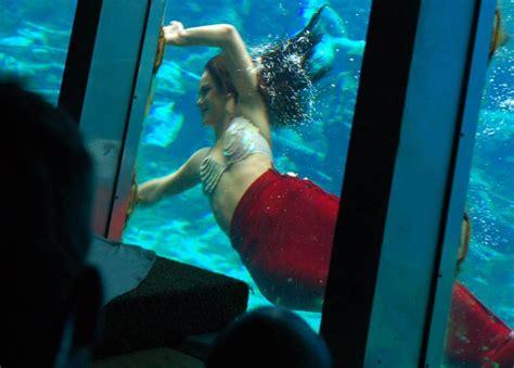 not shabby weeki wachee fl the real life underwater mermaids of weeki wachee florida