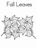 Coloring Leaves Maple Autumn Leaf Tree Fall Season Pages Voyageur Du Festival Netart Colouring Printable Bannock sketch template
