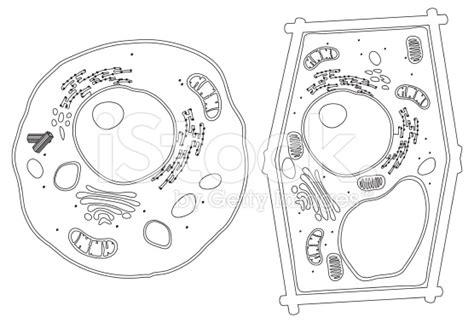 artimus prime  grade watercolor cells