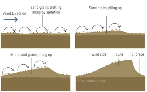 how do dunes form how are sand dunes formed world of exle