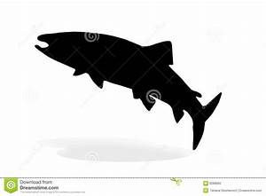 One Silhouette Of Salmon On A White Stock Photo - Image ...