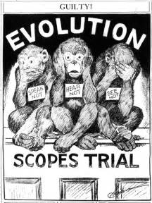 Image result for John Scopes Cartoons