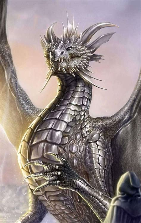 silver dragon wallpaper  jacobmccoy    zedge