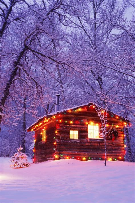 cozy   log cabins   snow
