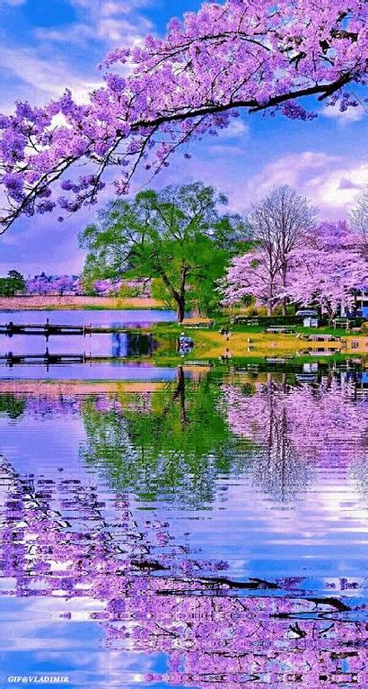 Nature Spring Flowers Landscape Amazing Places Landscapes