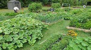 Potager En Bac : agriculture urbaine gr ce un potager en bac id ale pour ~ Preciouscoupons.com Idées de Décoration