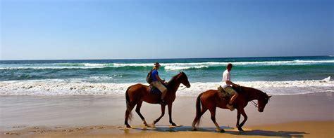 horseback riding brigantine beach miss experiences cannot visiting while