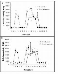 Time Course For Cellulase Activity Of P  Ostreatus And P