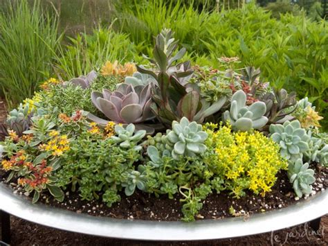 1000+ Images About Fire Pit Planter On Pinterest Fire