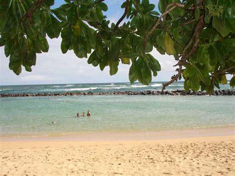 lydgate beach park  perfect place  families