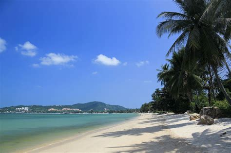 A Paradise Of A Place Koh Samui by Beaches Of Koh Samui The Luxury Signature