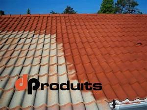 Anti Mousse Et Hydrofuge 2 En 1 : comment prot ger sa toiture quel hydrofuge de surface choisir ~ Melissatoandfro.com Idées de Décoration
