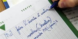 Insecticide Naturel Pour La Maison : devoirs la maison pour les coliers interdits et inutiles mais ~ Nature-et-papiers.com Idées de Décoration