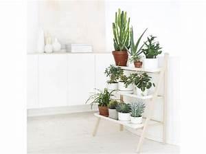 Support Plante Intérieur : plantes et fleurs 15 id es pour d corer mon int rieur ~ Teatrodelosmanantiales.com Idées de Décoration