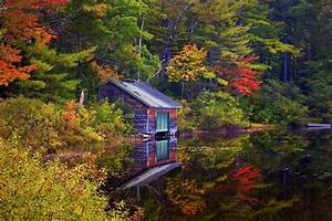 Lake, House, Forest, Trees, Landscape, Autumn, Wallpapers, Hd, Desktop, And, Mobile, Backgrounds