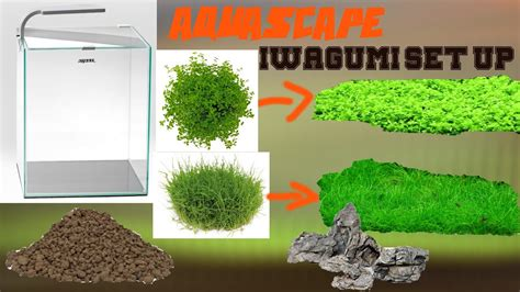 Setting Aquascape by Iwagumi Aquascaping Set Up Aquascape Einrichten