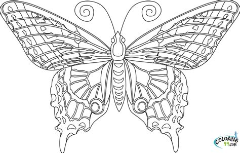 Free printable butterfly coloring pages. Butterfly Coloring Pages   Team colors