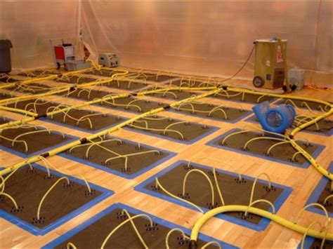 Cupped Hardwood Floor Drying by Carpet Cleaners Island Ny Hardwood Floor Drying