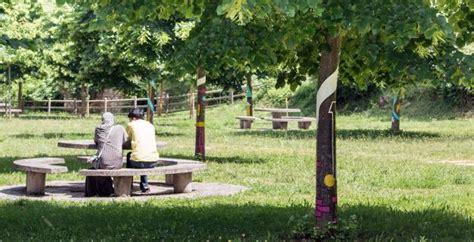 Árboles que 'suenan' en Ezcaray   La Rioja