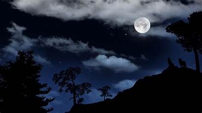 Wolf Moon Howling Wallpapers Night Howl Moonlight
