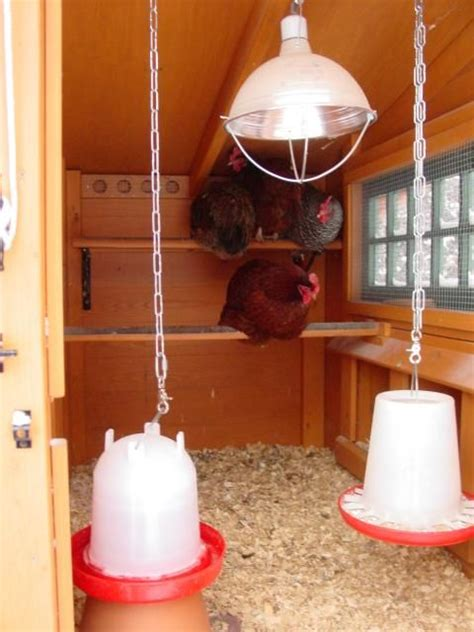 25 best ideas about inside chicken coop on