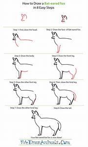 How To Draw A Bat Eared Fox