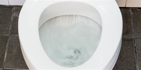 Why You Shouldn't Use Drano In Your Toilet  Pippin Brothers